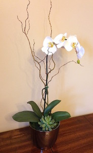 white orchid silk thumb silver pot